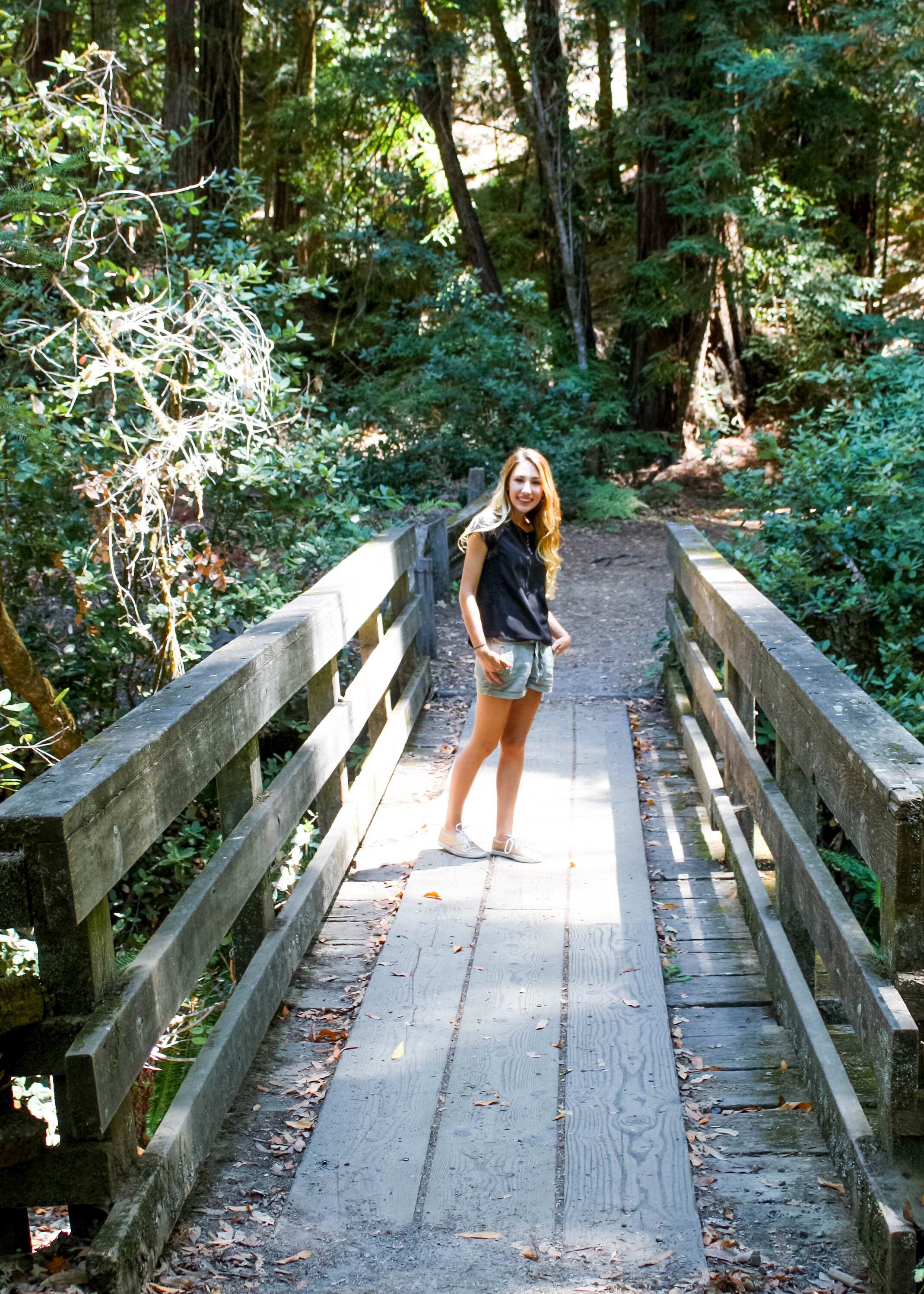A Day In The Redwoods